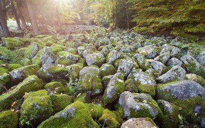 Kamenné-more-Veľká-Lehota (© Peter Čakovský )_z
